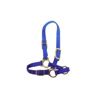 Sheep Or Goat Webbing Halter. 3 Colours Available
