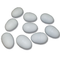 Plastic Poultry Egg - Pack Of 2