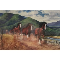 Greeting Cards Herding Clydesdales