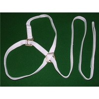 Sprintwell Welsh Halter & Lead. 1in Brass.