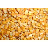 Whole Corn 25kg